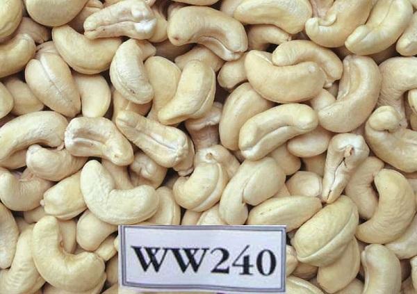 CASHEW NUT WW240